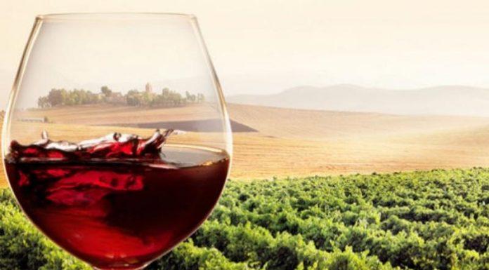 Τέλος για τον Ειδικό Φόρο στο κρασί