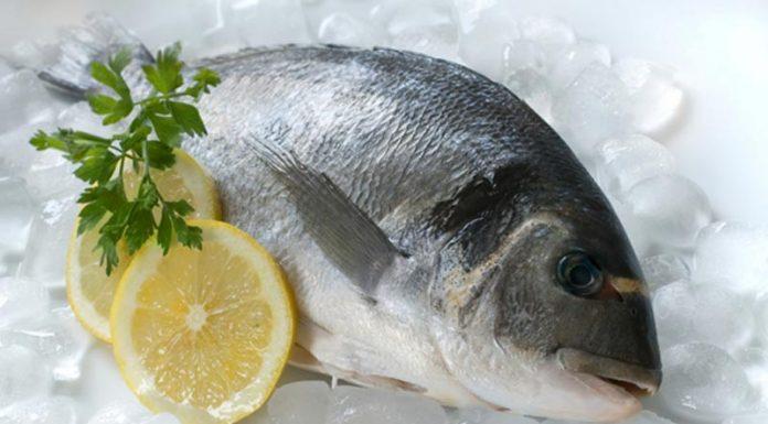 """Στο """"κόκκινο"""" ο ανταγωνισμός για τα ελληνικά ψάρια"""