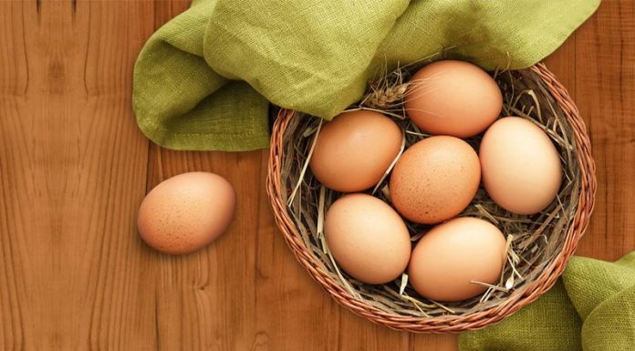 """Στρατηγική συμμαχία για """"Ηπειρωτικά Αυγά"""" και """"Πίνδο"""""""