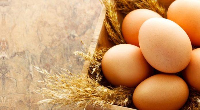 Τα Χρυσά Αυγά στη Food Expo