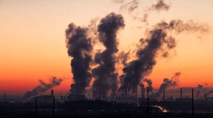 Nestle και Danone περιορίζουν το διοξείδιο του άνθρακα