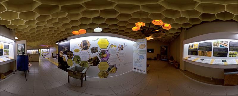 Μελισσοκομική Δωδεκανήσου